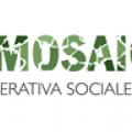 """Avvio Laboratori Cooperativa """"Il Mosaico"""""""